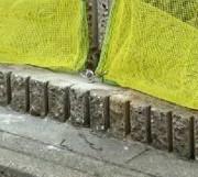 フックで固定された黄色いゴミネットのイメージ写真
